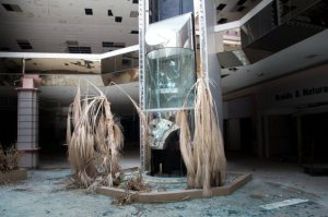 21-hauntingly-beautiful-photos-of-deserted-shopping-malls